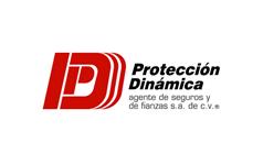 proteccion dinamica